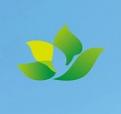 湖北省武汉市武昌雷电竞app